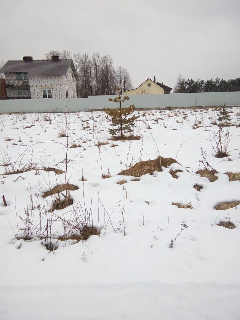 Земельный участок 11 соток в д. Раздолье