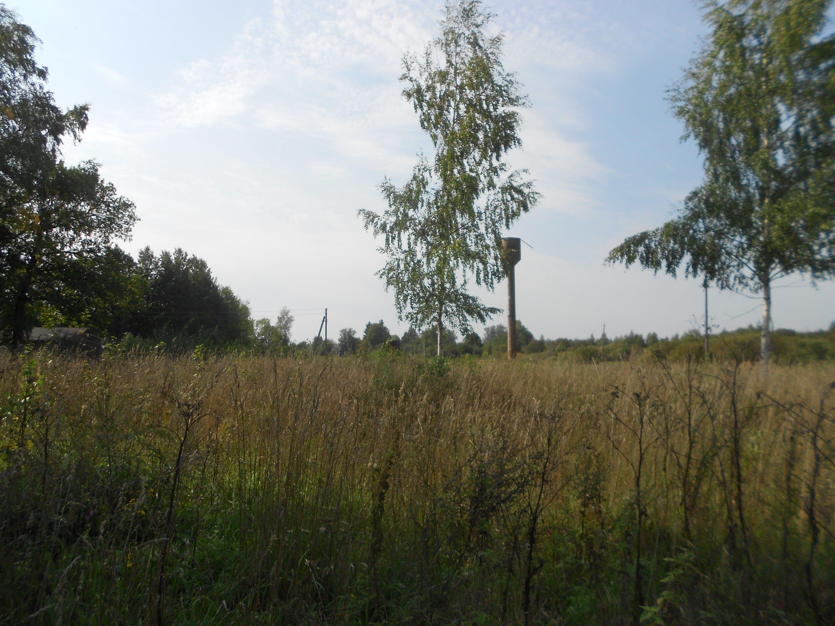 Земельный участок 24 сотки д. Макарино