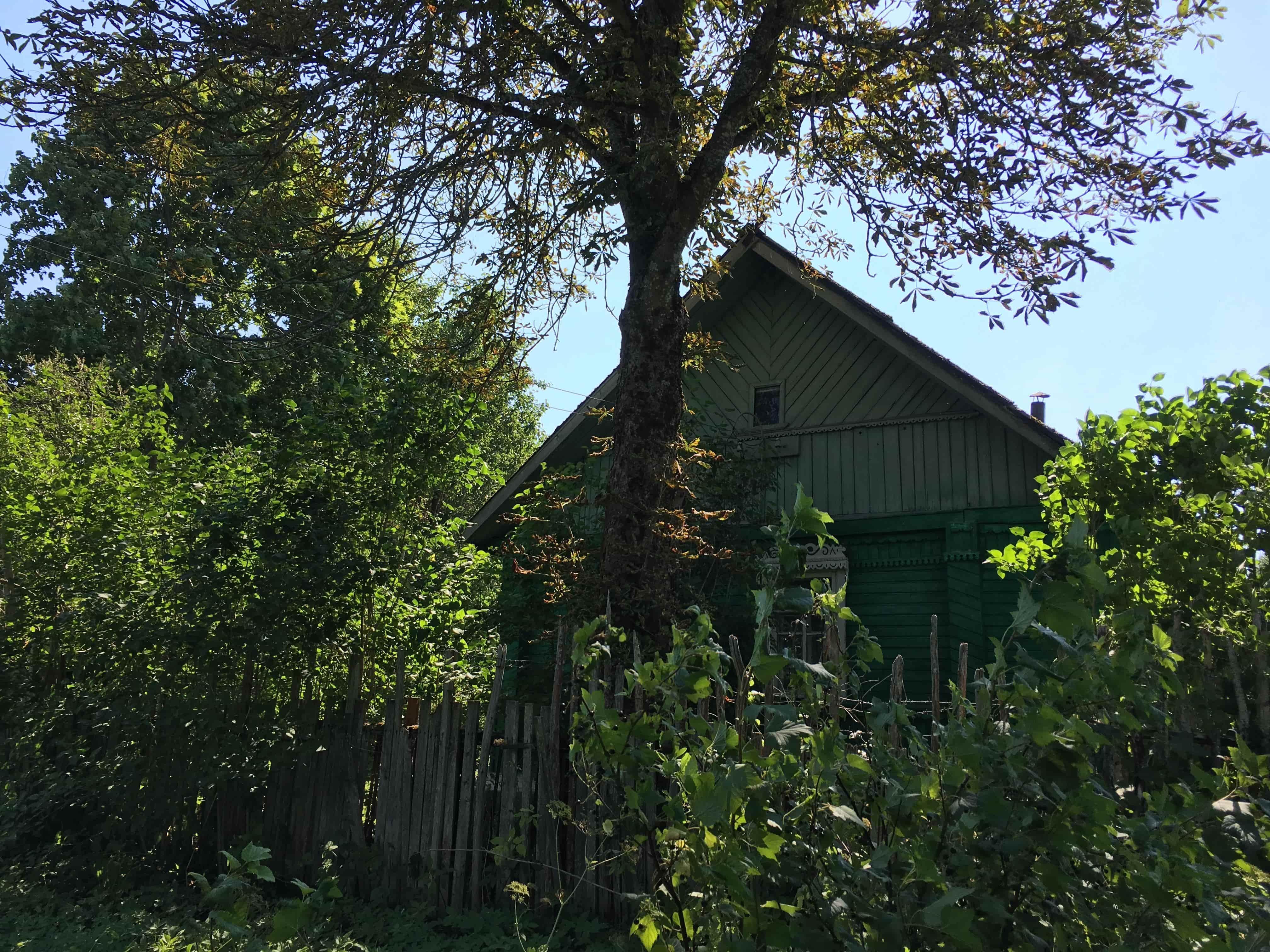 Дом 50 кв.м. в д. Лопатиха Псковского района