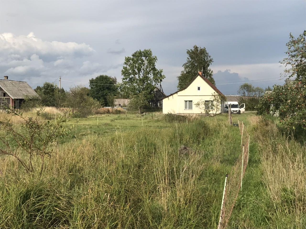 Дом в Пыталово
