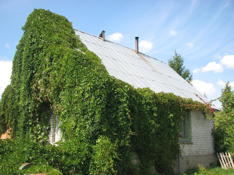 Дом с земельным участком в д. Бодогово (Печорский район)